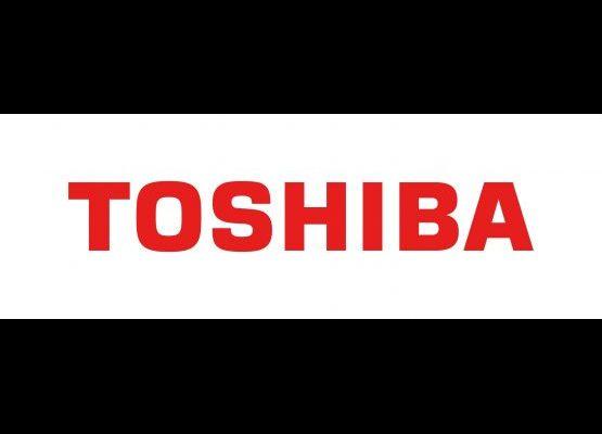 Toshiba Italia Multiclima